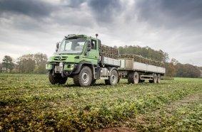 Insgesamt zwölf Mercedes-Benz Unimog hat Mählmann Gemüsebau im Einsatz, damit die Frucht frisch auf den Markt kommt