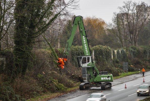 Einsatz entlang der Autobahn: Einen SENNEBOGEN 830 R-HDD setzt die Weng Group für die kontrollierte Baumfällung ein. Selbst große Bäume können so schnell und sicher entfernt werden und der Verkehr fließt weiter.