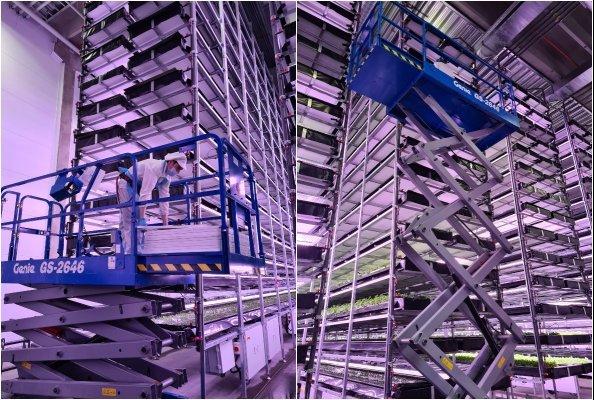 Genie® Scherenarbeitsbühnen Im Einsatz In Kopenhagen In Der Grössten Vertikalen Farm Europas