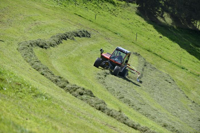 Lely bietet mehr Sicherheit in den Alpen