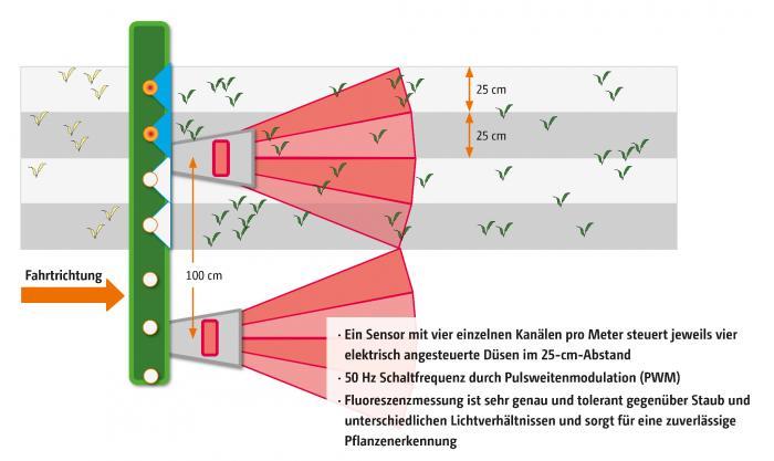 Sensor-Düsen-System AmaSpot