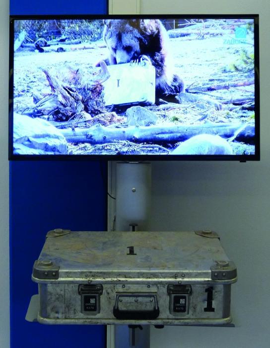 In einem amerikanischen Nationalpark wurde eine ZARGES-Box von einem ausgewachsenen Grizzly-Bären getestet. Jetzt ist die Originalbox samt Video im ZARGES Info-Center in Weilheim ausgestellt.