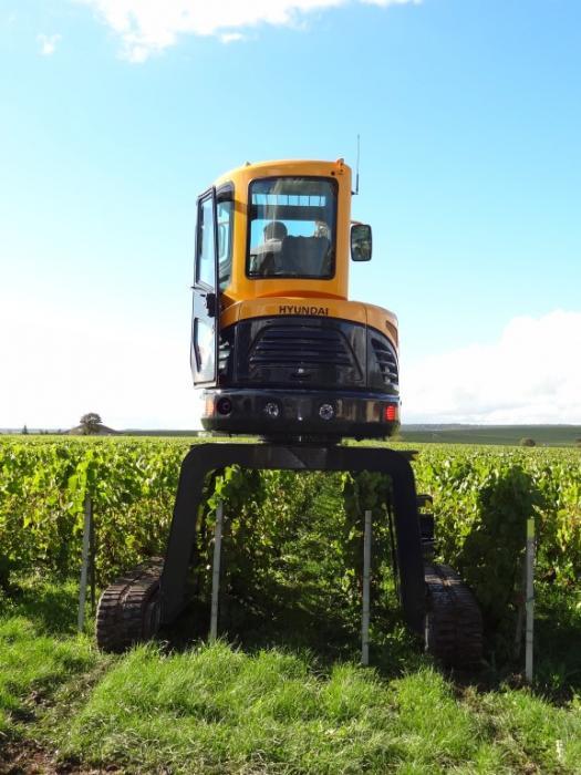 """Für den Einsatz in den französischen Weinbergen in der Champagne wurde der Hyundai-Minibagger R35Z-9 um 1.200 mm """"höher gelegt"""", so dass er über den Weinstöcken verfahren und arbeiten kann."""